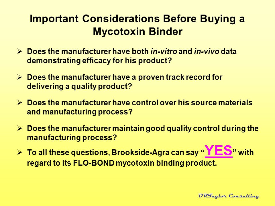 Important Considerations Before Buying a Mycotoxin Binder