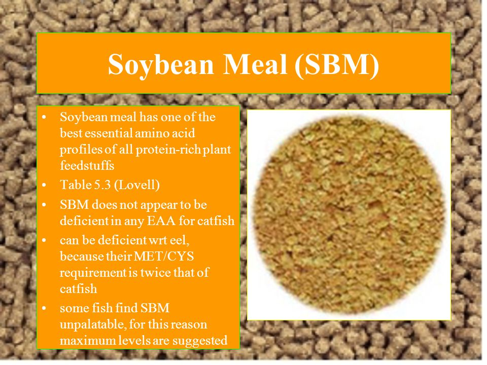 Soybean Meal (SBM) Soybean meal has one of the best essential amino acid profiles of all protein-rich plant feedstuffs.