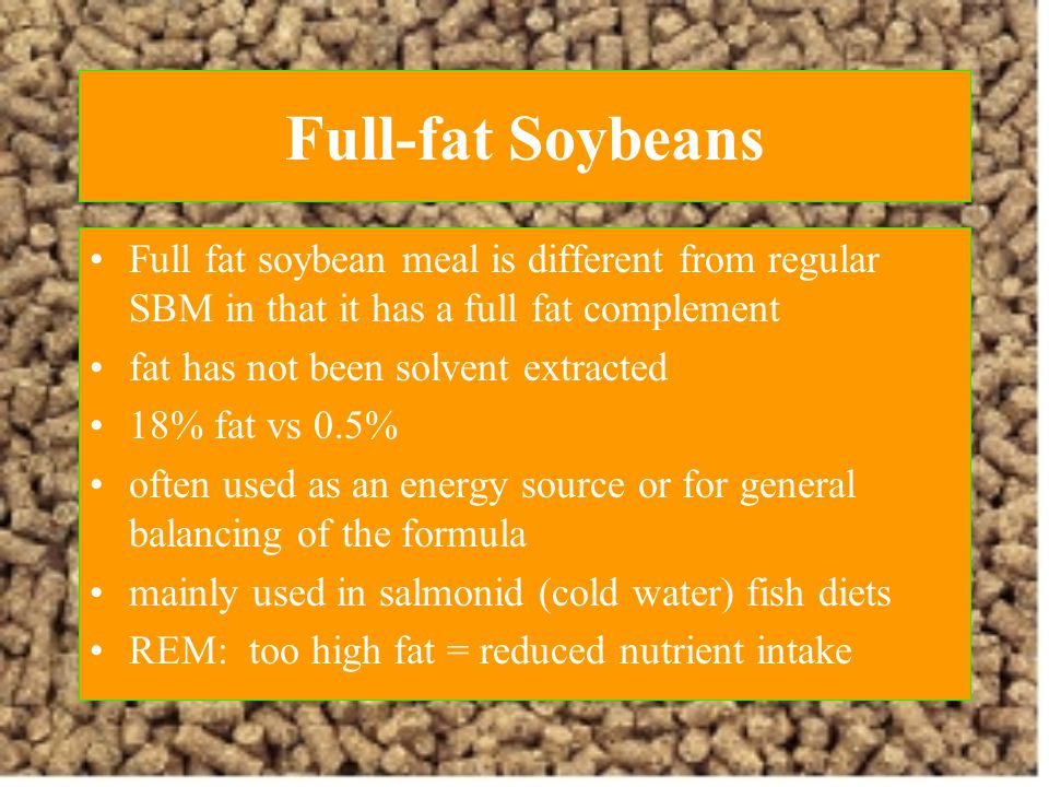 Full-fat Soybeans Full fat soybean meal is different from regular SBM in that it has a full fat complement.