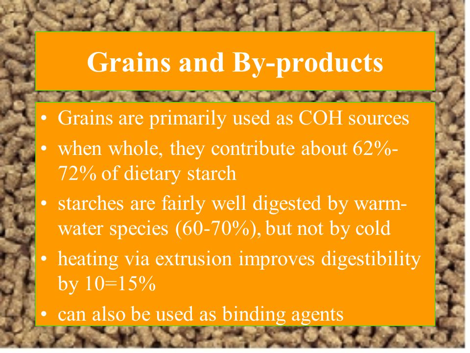 Grains and By-products