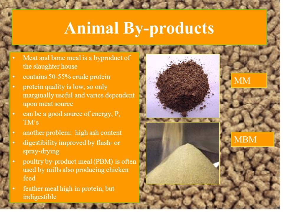 Animal By-products MM MBM