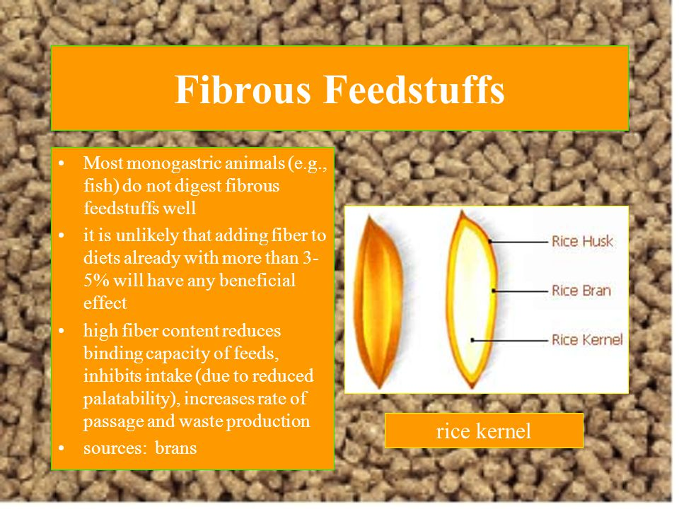 Fibrous Feedstuffs rice kernel