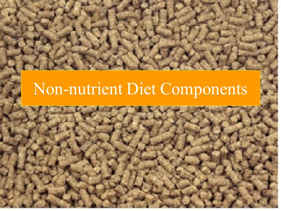 Non-nutrient Diet Components