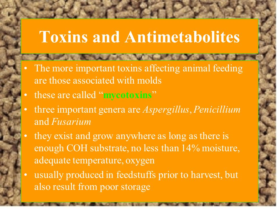 Toxins and Antimetabolites