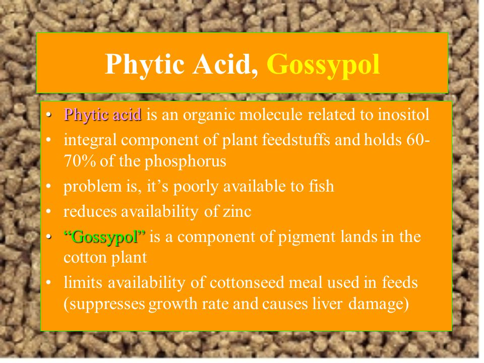 Phytic Acid, Gossypol Phytic acid is an organic molecule related to inositol.