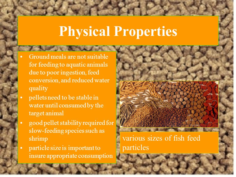 Physical Properties various sizes of fish feed particles