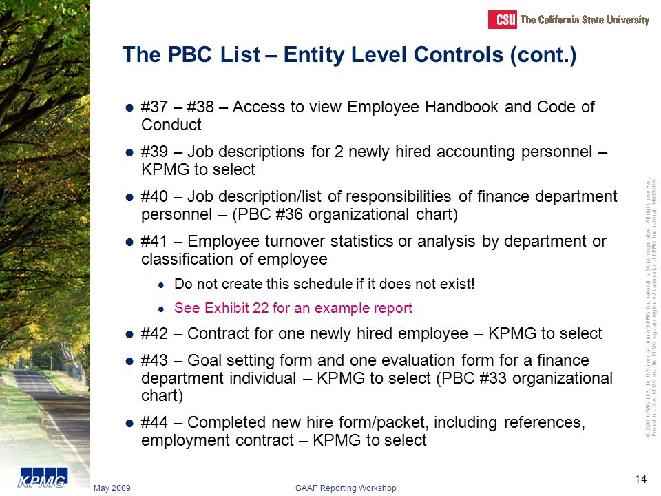 The PBC List – Entity Level Controls (cont.)