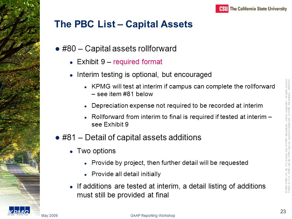 The PBC List – Capital Assets