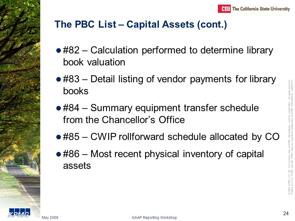 The PBC List – Capital Assets (cont.)