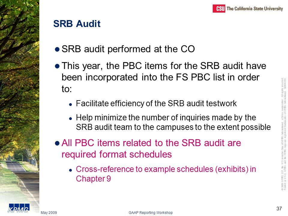 SRB audit performed at the CO