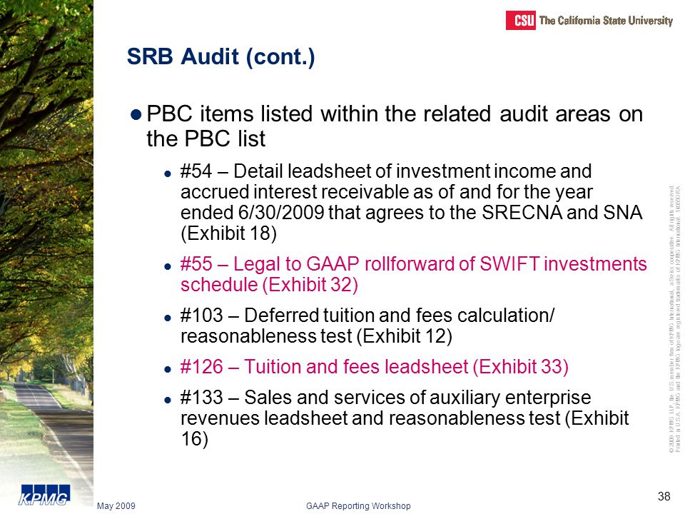 PBC items listed within the related audit areas on the PBC list