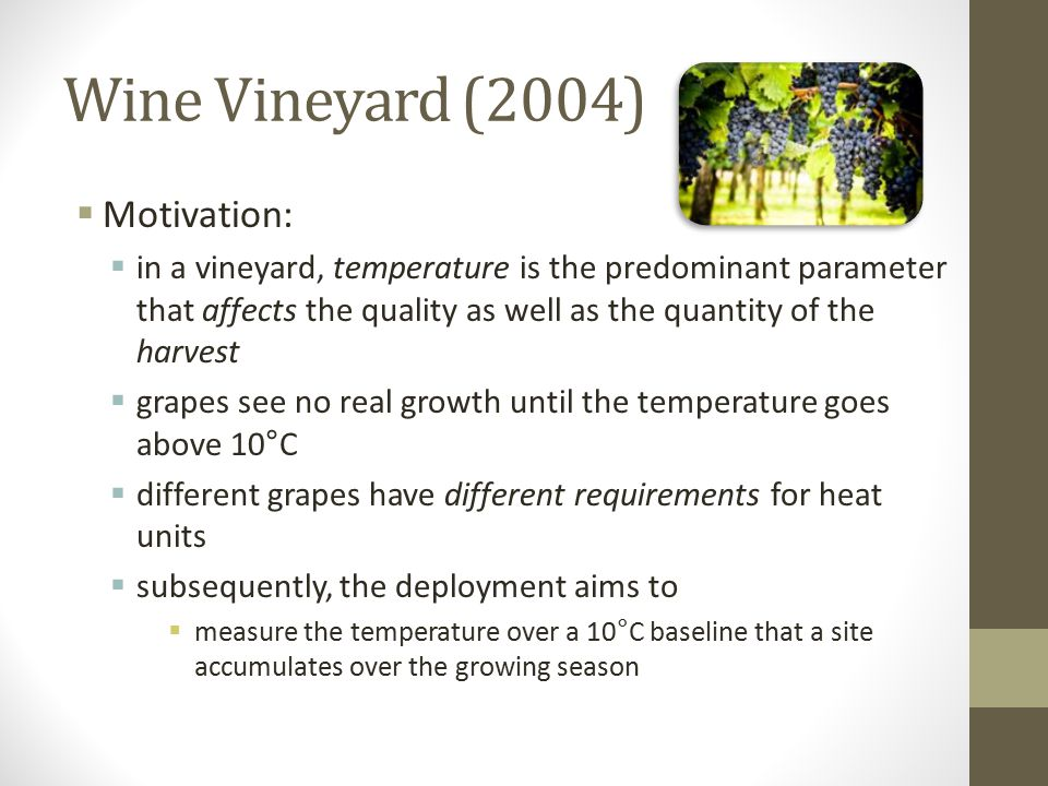 Wine Vineyard (2004) Motivation: