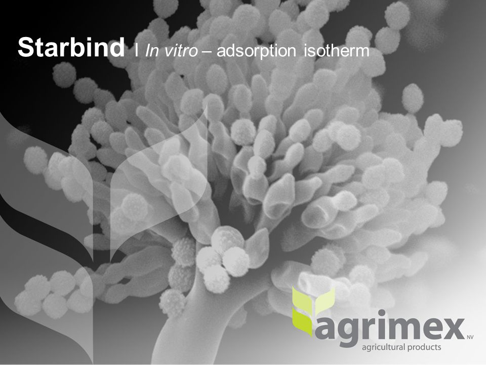 Starbind I In vitro – adsorption isotherm