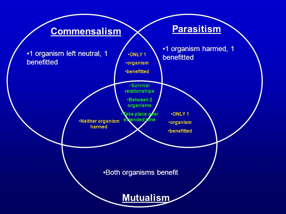 Parasitism Commensalism Mutualism 1 organism harmed, 1 benefitted