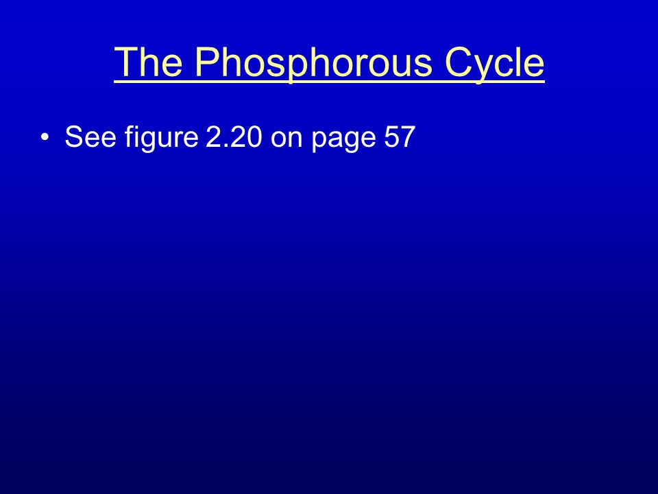 The Phosphorous Cycle See figure 2.20 on page 57