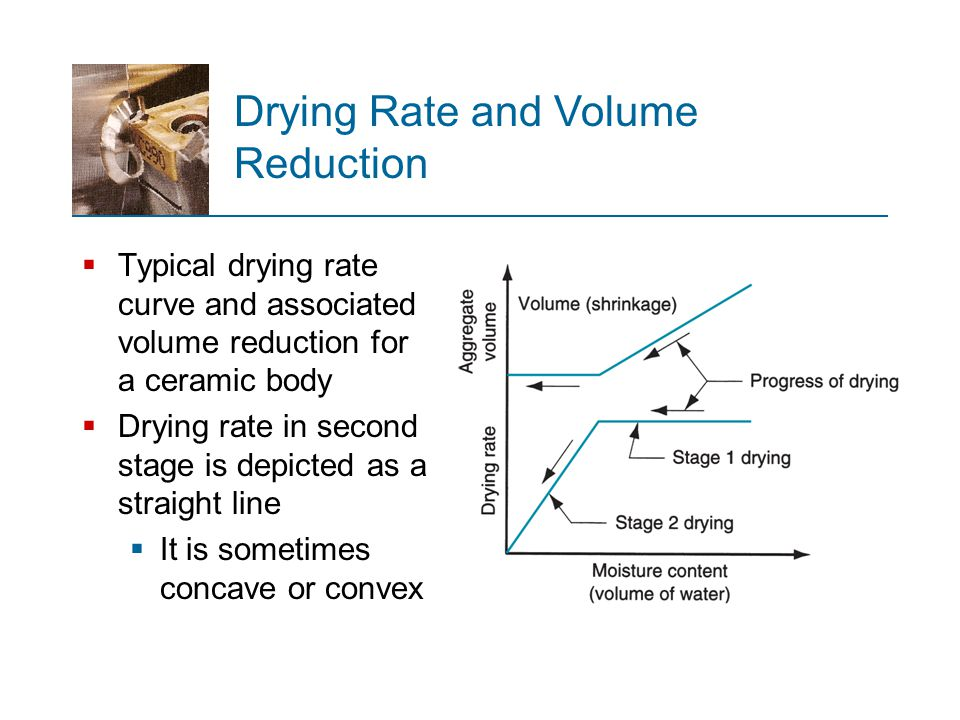 Drying Rate and Volume Reduction