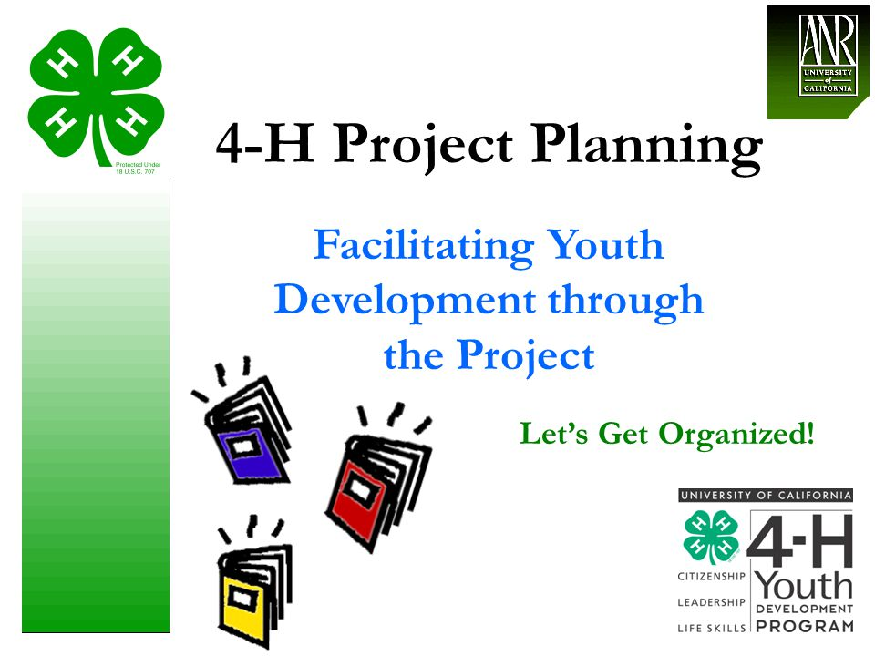 Facilitating Youth Development through