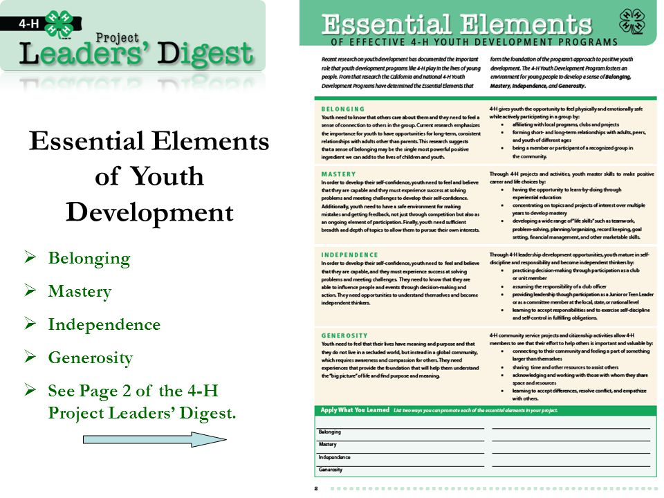 Essential Elements of Youth