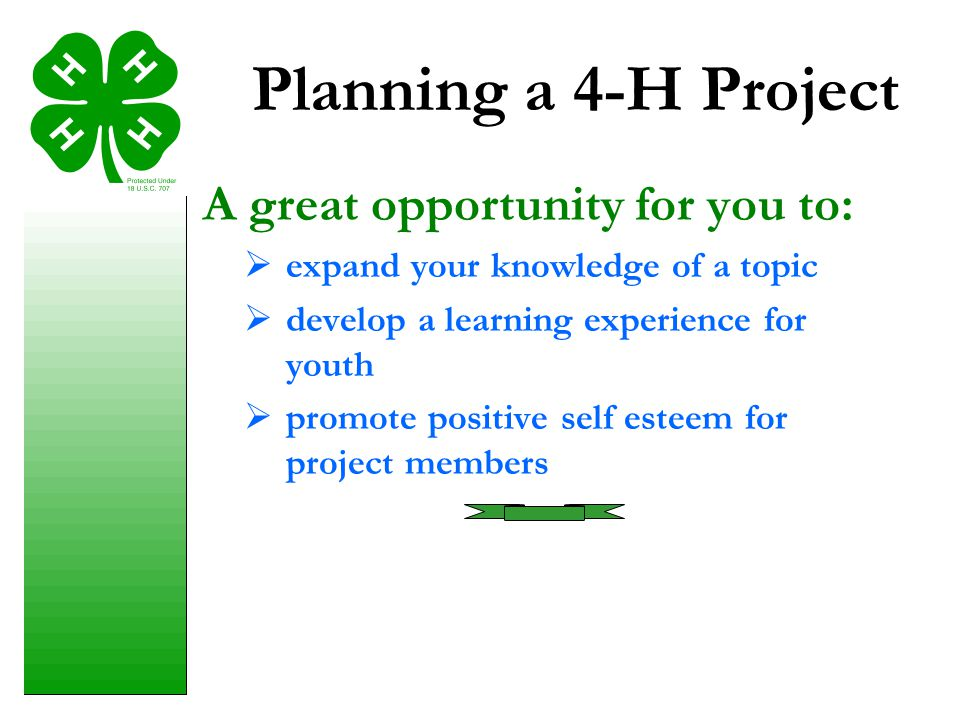 Planning a 4-H Project A great opportunity for you to: