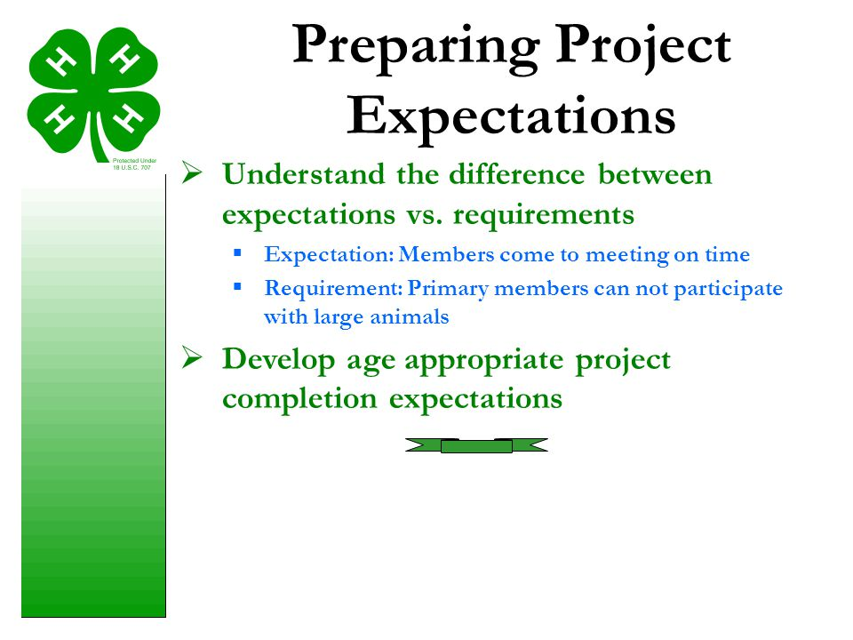 Preparing Project Expectations