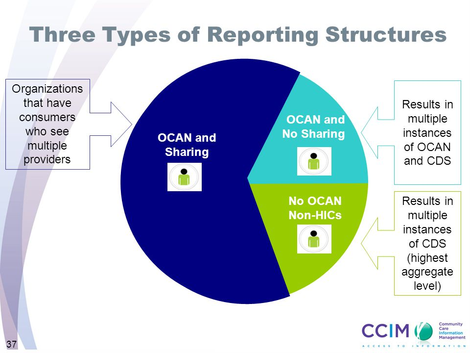 Three Types of Reporting Structures