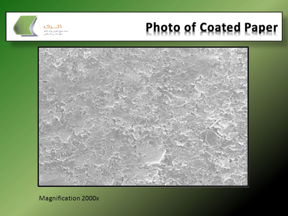 Photo of Coated Paper Magnification 2000x