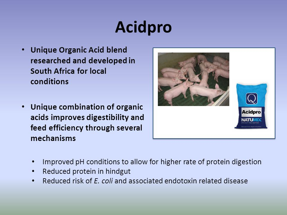 Acidpro Unique Organic Acid blend researched and developed in South Africa for local conditions.