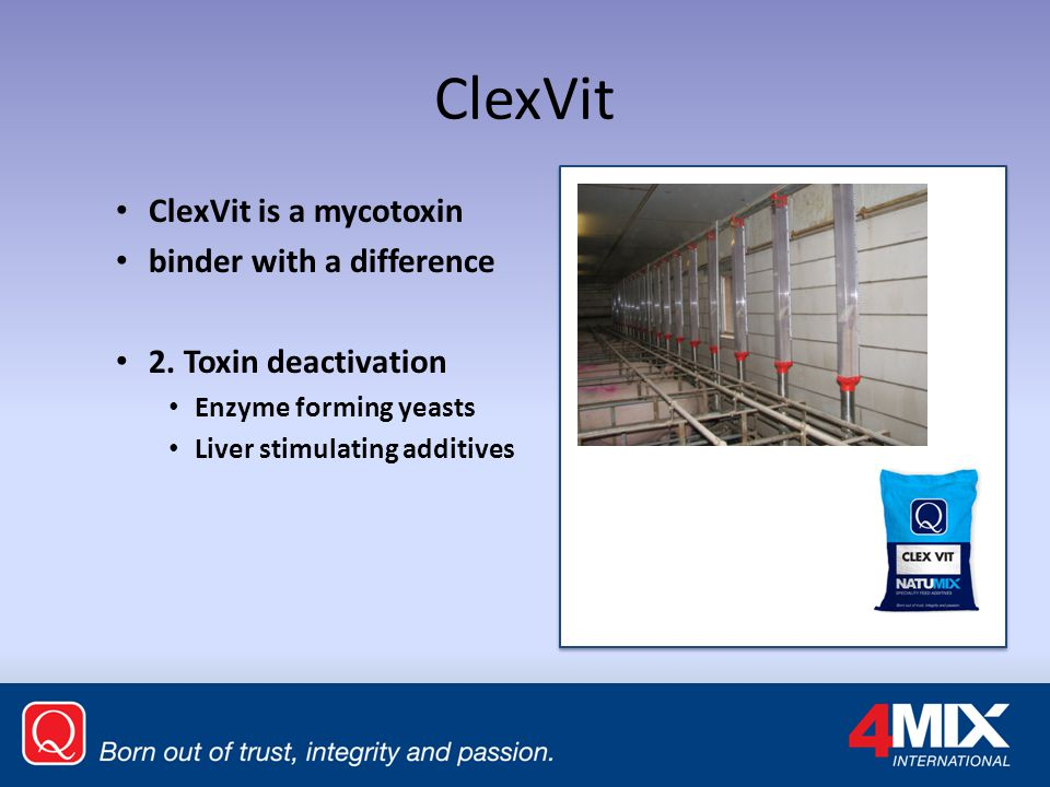 ClexVit ClexVit is a mycotoxin binder with a difference