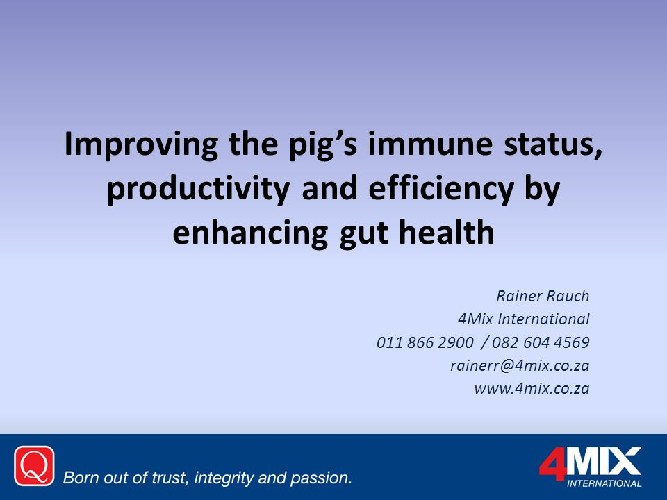 Improving the pig's immune status, productivity and efficiency by enhancing gut health