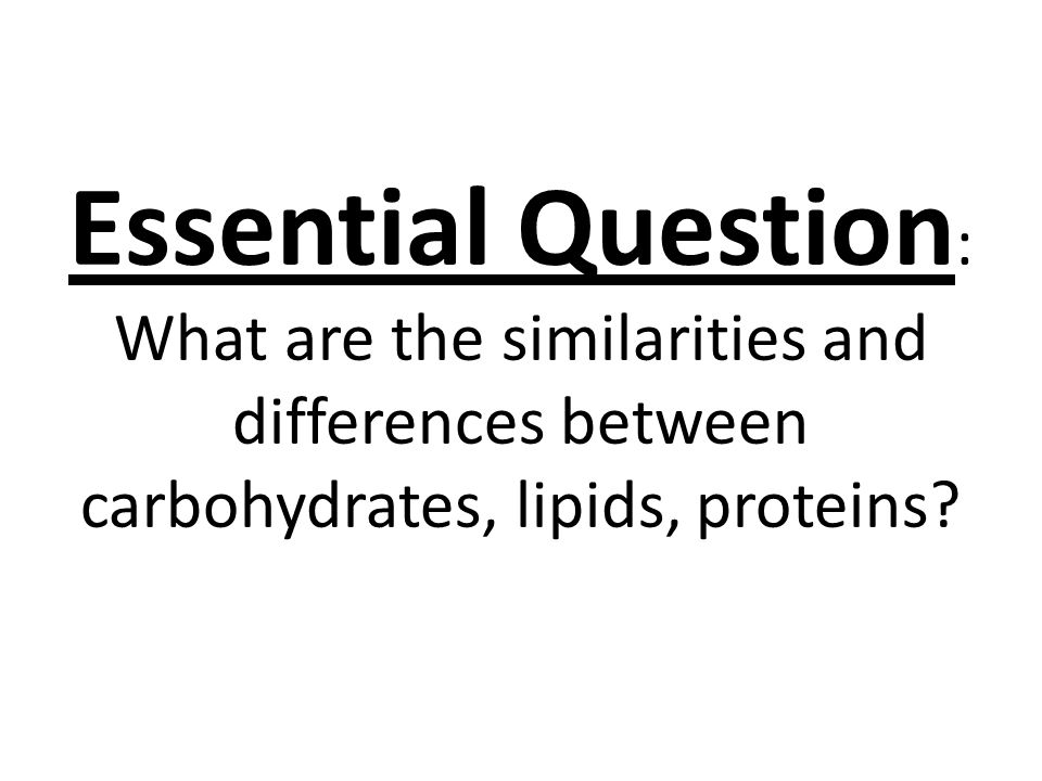 Essential Question: What are the similarities and differences between carbohydrates, lipids, proteins