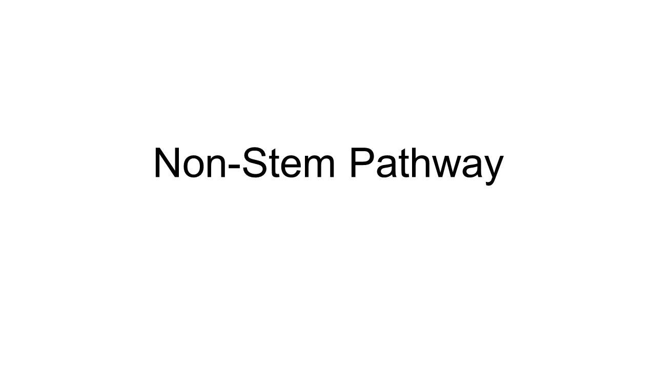 Non-Stem Pathway