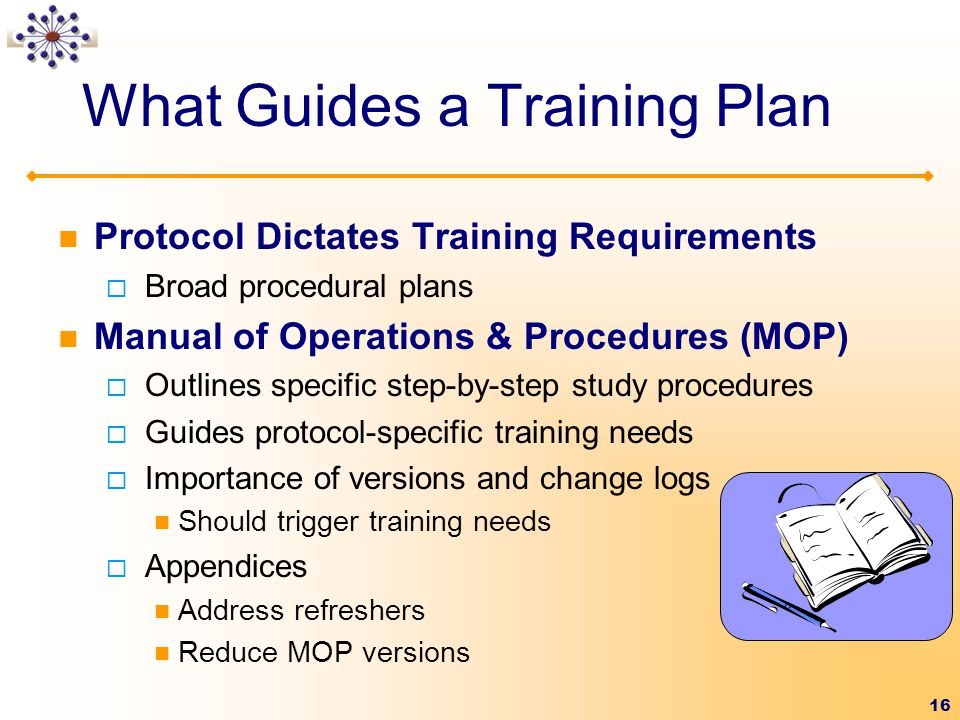 What Guides a Training Plan