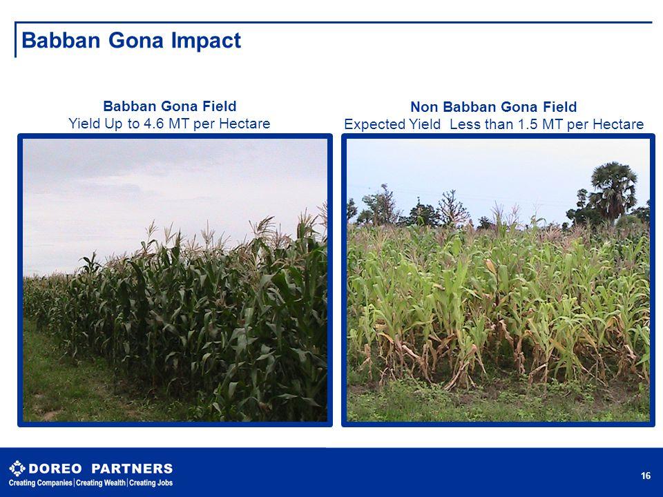 Babban Gona Impact Babban Gona Field Non Babban Gona Field
