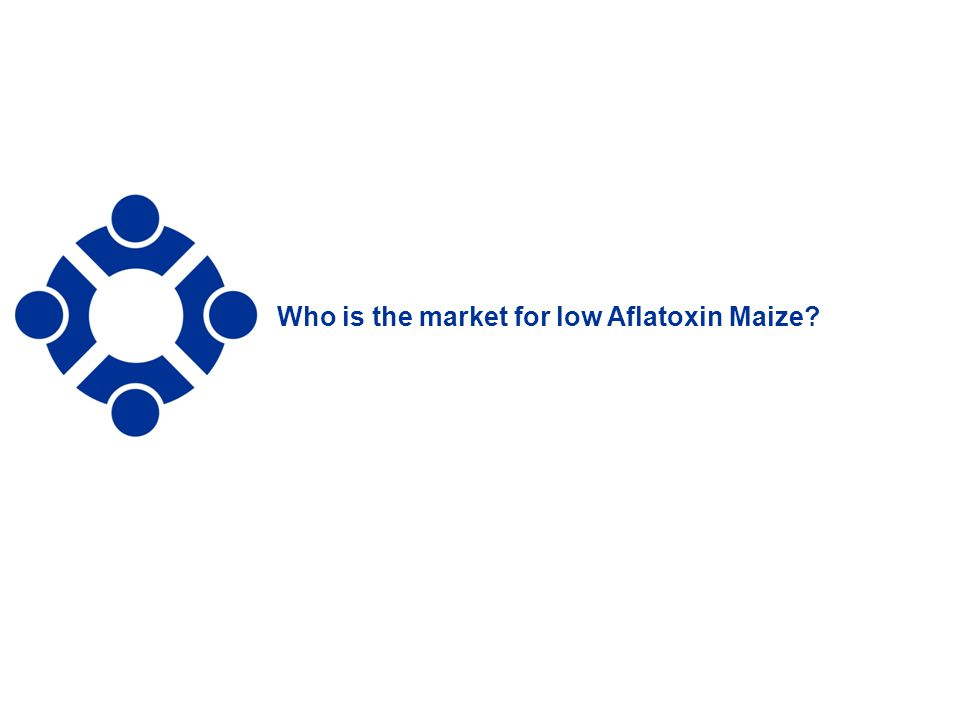 Who is the market for low Aflatoxin Maize