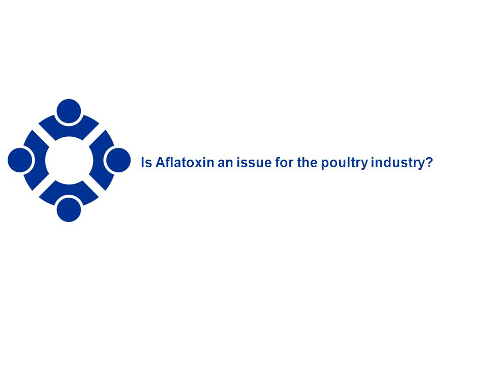 Is Aflatoxin an issue for the poultry industry