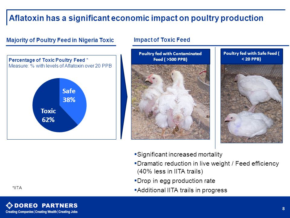 Aflatoxin has a significant economic impact on poultry production