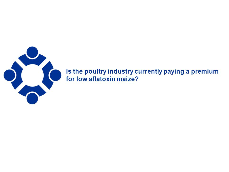 Is the poultry industry currently paying a premium for low aflatoxin maize
