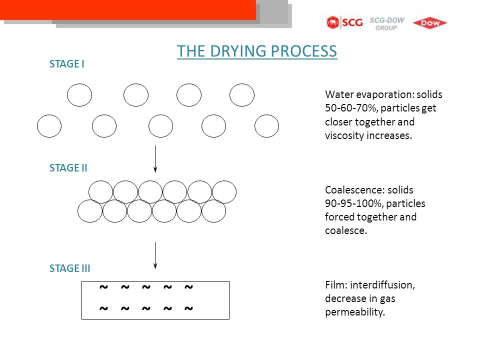 THE DRYING PROCESS ~ ~ ~ ~ ~ STAGE I Water evaporation: solids