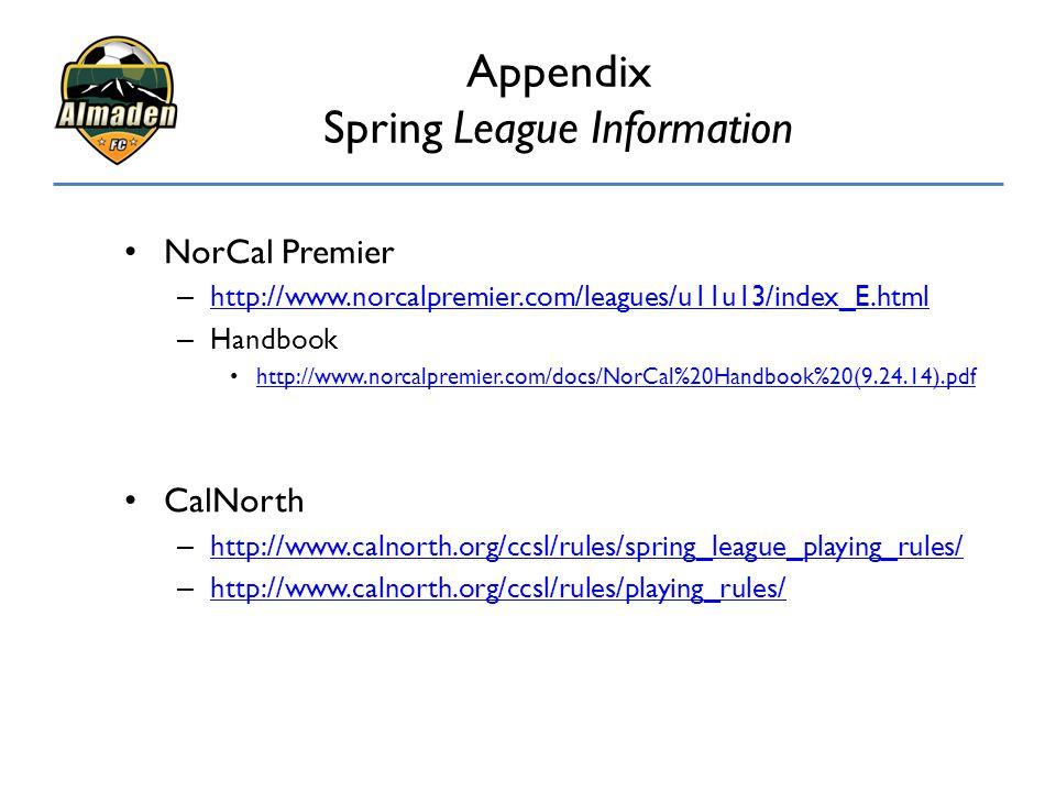 Appendix Spring League Information