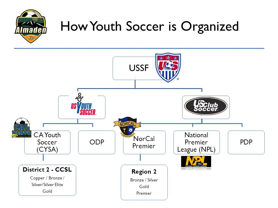 How Youth Soccer is Organized
