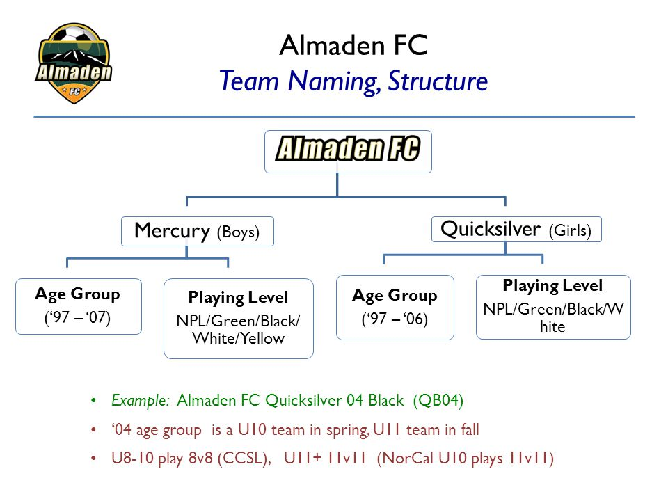 Almaden FC Team Naming, Structure