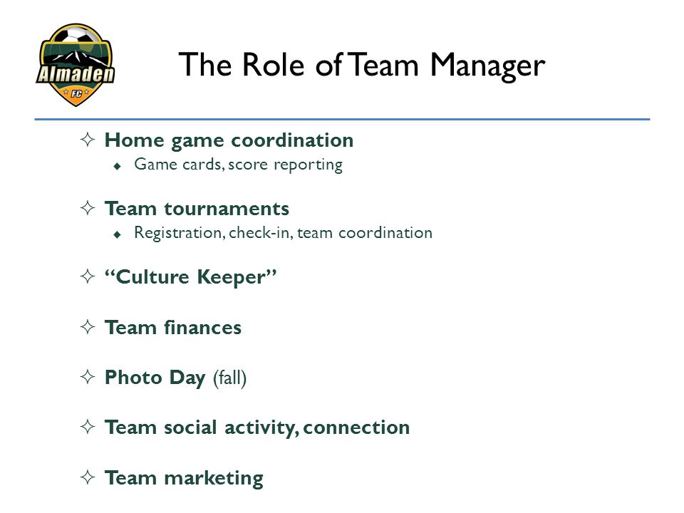 The Role of Team Manager