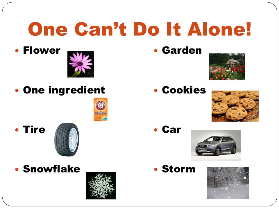 One Can't Do It Alone! Flower One ingredient Tire Snowflake Garden