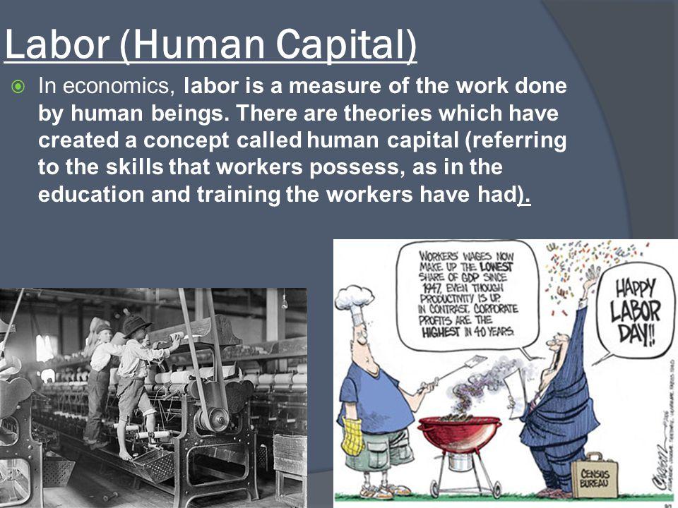Labor (Human Capital)