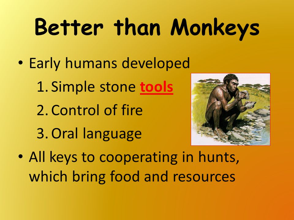 Better than Monkeys Early humans developed Simple stone tools