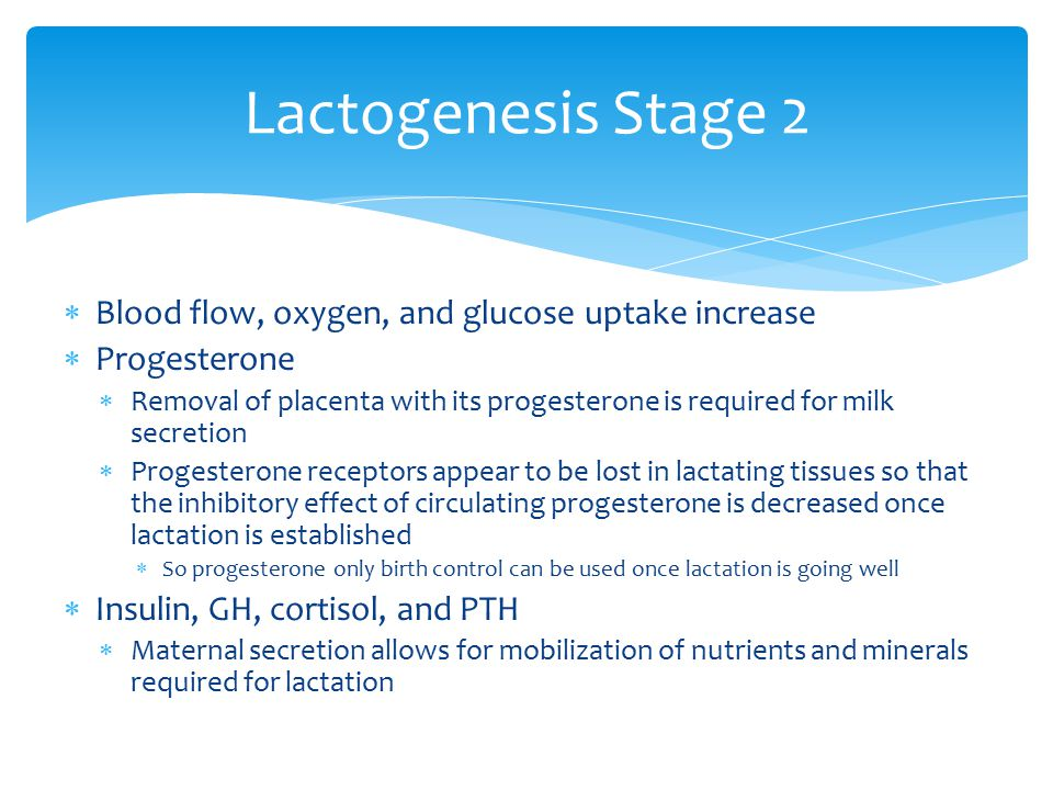 Lactogenesis Stage 2 Blood flow, oxygen, and glucose uptake increase