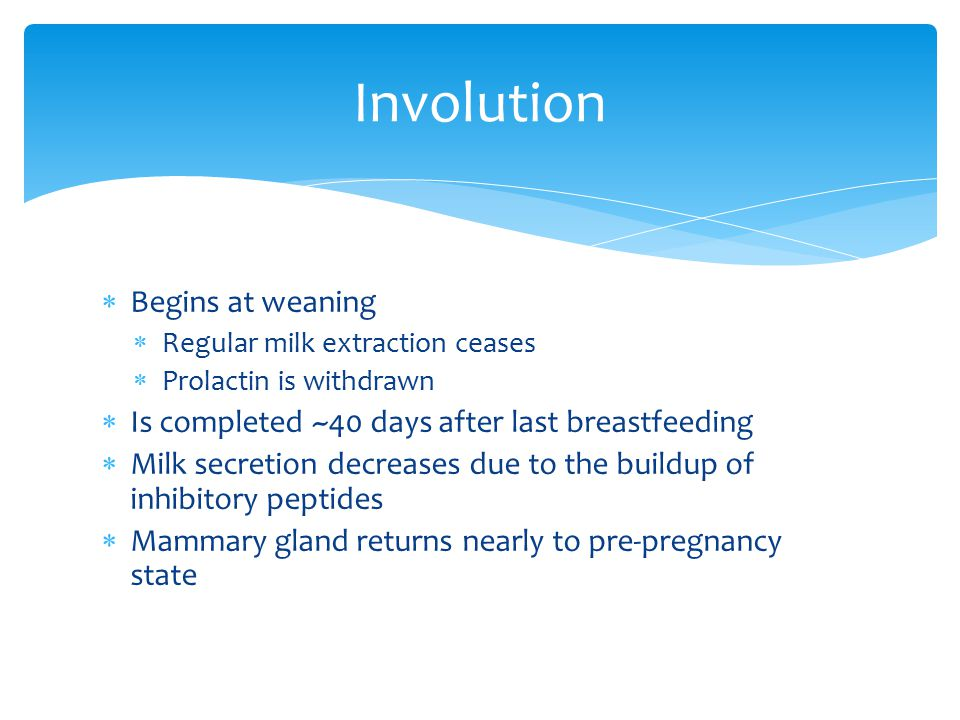 Involution Begins at weaning