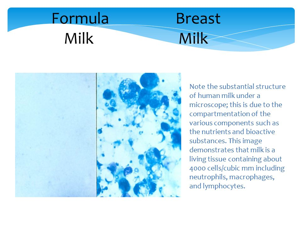Formula Breast Milk Milk
