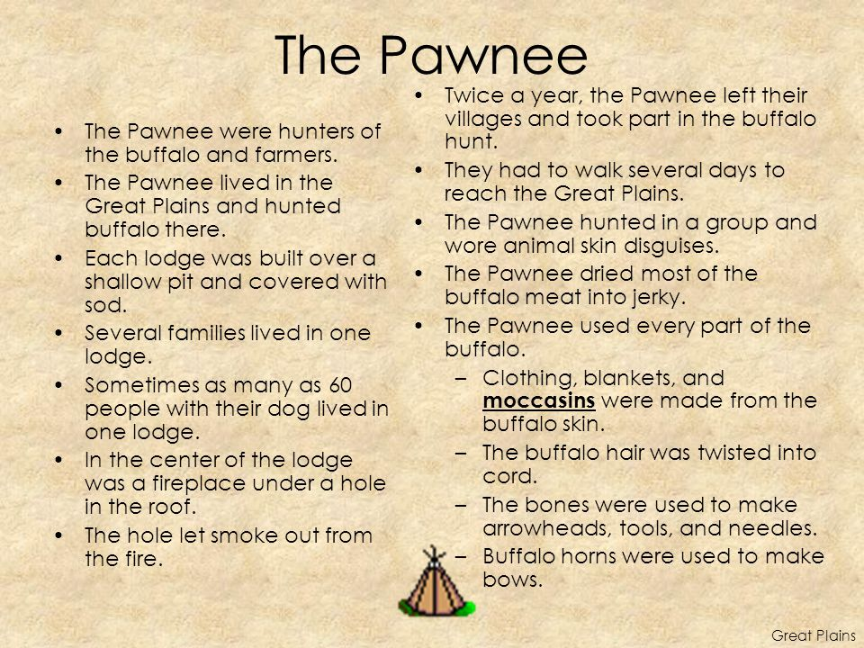 The Pawnee Twice a year, the Pawnee left their villages and took part in the buffalo hunt. They had to walk several days to reach the Great Plains.