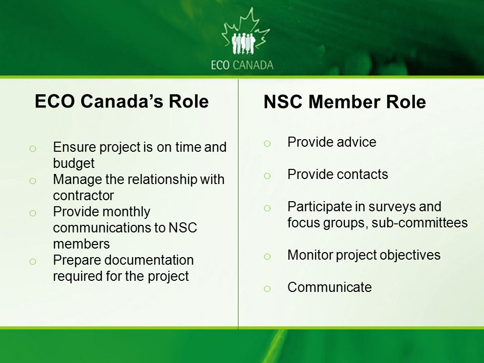 ECO Canada's Role NSC Member Role Provide advice